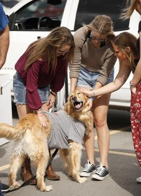 Haley Alda, dental hygiene freshman, Lauren Pittman, business management, and Alyson Beard, exercise physiology, pet the dog Cooper during the tailgate for MSU vs. West Texas A&M at Memorial Stadium, MSU won 45-3, Saturday, Oct. 21, 2017. Photo by Francisco Martinez