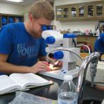 Students to showcase EURECA and UGROW findings Friday