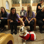 Stress-relieving dogs take over Moffett Library