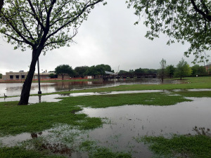 Sikes Lake and the surrounding grassy area flooded April 27 following a rain storm on campus. Photo by Jessalyn Castro.