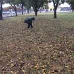Persistent pickers participate in Pecan Day