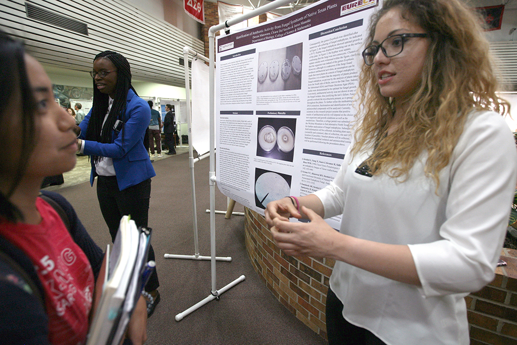 Undergraduate research can jump start careers