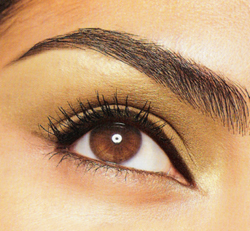 "Brows that say ""WOW!"""
