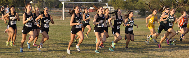 The Women's Cross Country team runs in last year's Stampede, on Sept. 5, 2013. Photo by Bailey Pitzer.