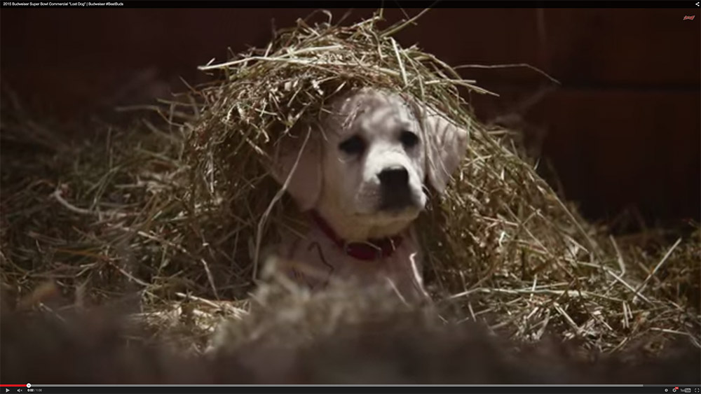 2015 Super Bowl Commercials: The good and the bad