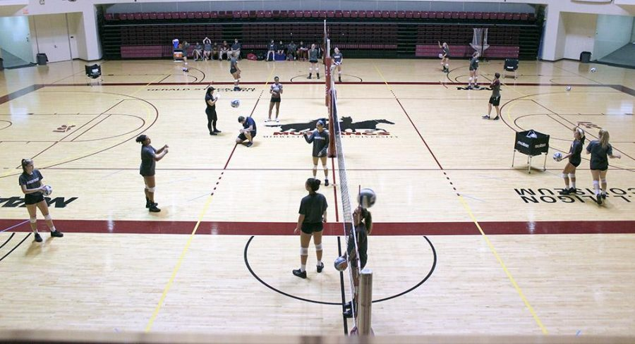 Midwestern State Universitys womens volleyball team runs drills and scrimmages during practice, Tuesday, September 1, 2015. Photo by Francisco Martinez