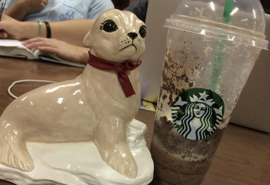 Robert, the ceramic seal, poses for a photo with his favorite drink. His handler, Ryan Lee, sophomore in psychology, says Robert always enjoys studying with friends. Photo by Ryan Lee.