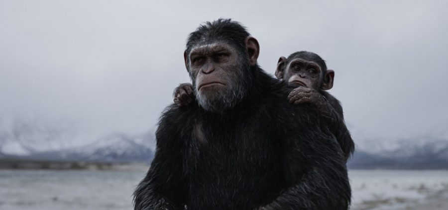 Andy Serkis and Devyn Dalton in War for the Planet of the Apes (2017). Photo courtesy of IMDB.