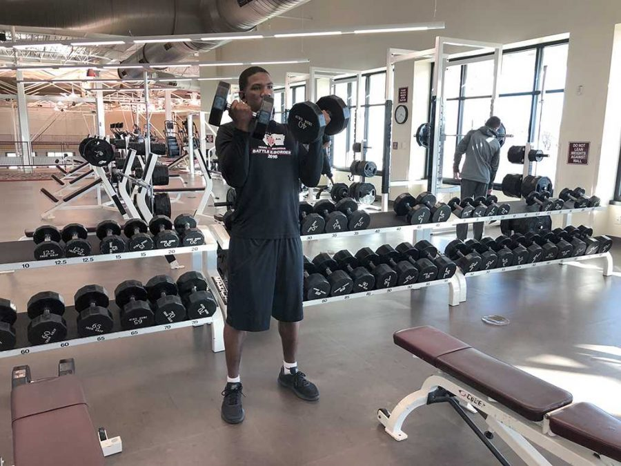 Kendall Jones, vocal and biology freshman, lifts weights in the RedWine Wellness center on Jan. 16. Photo by Chloe Phillips
