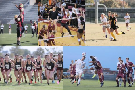 Fall semester sports recap
